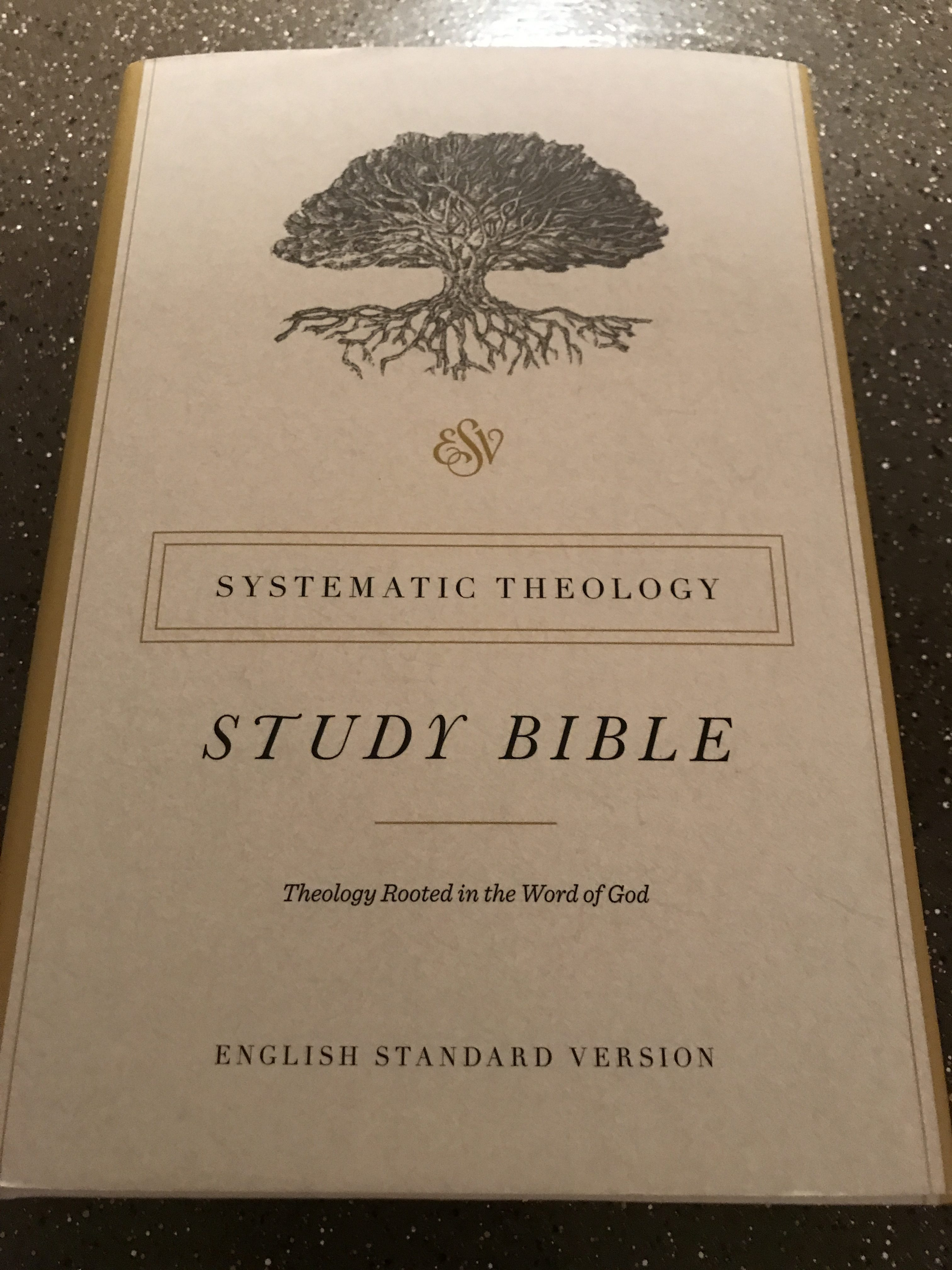 ESV Systematic Theology Bible Review - Exploring the Truth